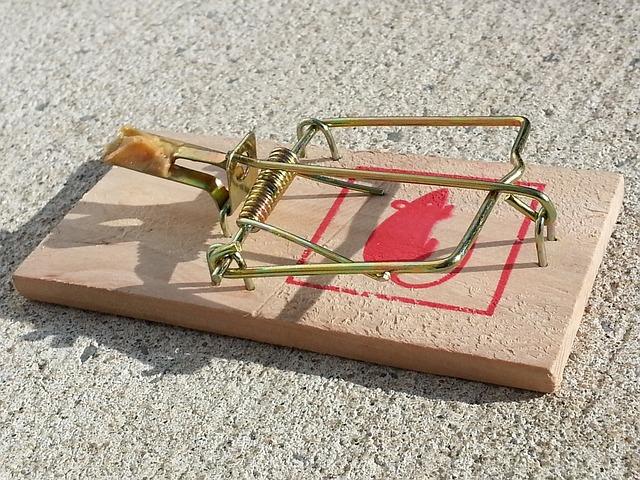 mouse-trap