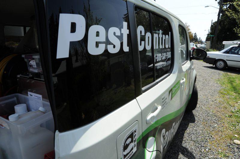 control-pest